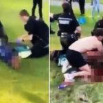 Varios muertos y heridos en apuñalamiento masivo en parque de Inglaterra (Video)