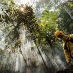 ONU advierte avance del covid-19 en Amazonia de Perú, Colombia y Brasil
