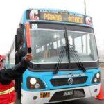 Cuarentena: ATU impuso 4.388 papeletas a unidades de transporte público en febrero