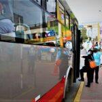 Metropolitano: ATU pone en servicio 115 vehículos para atender rutas alimentadoras