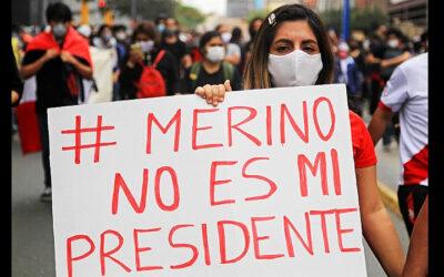 Merino101102