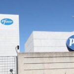 EMA aún no ha recibido los datos finales del ensayo de la vacuna de Pfizer