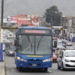ATU pide sanción para conductor que atropelló a operadora vial en el Rímac