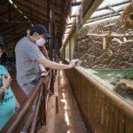 Museos y zoológicos abrirán sus puertas desde el 1 de marzo